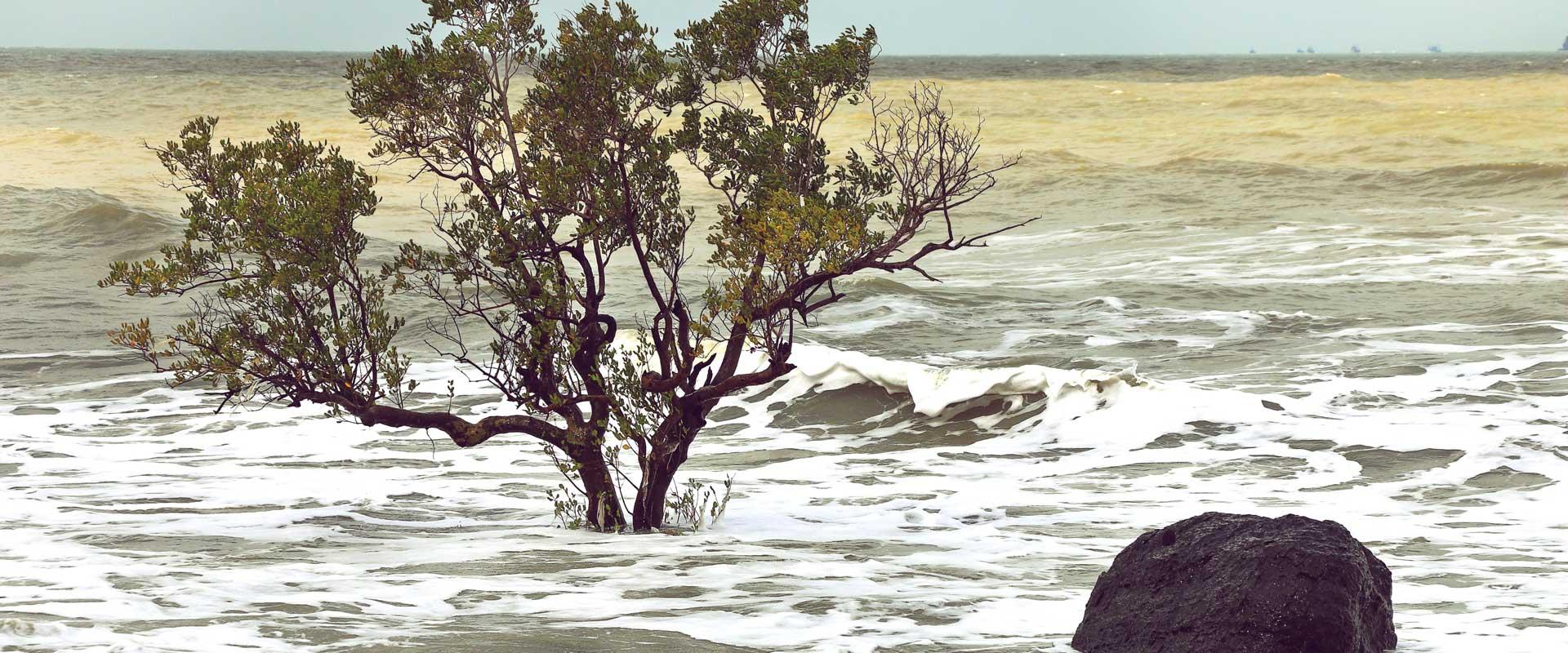 Auf zu neuen Ufern: Der Anstieg des Meeresspiegels