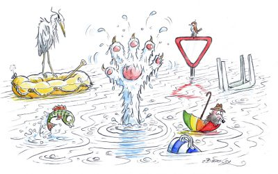 Kater Sebastian im Hochwasser